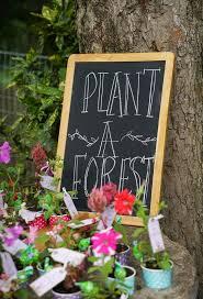 Girls Enchanted Forest Bedroom Best 25 Enchanted Forest Party Ideas On Pinterest Forest Party