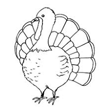 coloring page for toddlers top 25 turkey coloring pages for toddlers