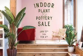 swansons nursery seattle u0027s favorite garden store since 1924