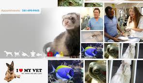 home abc animal and bird clinic