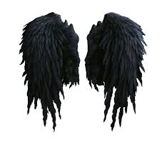 halloween angel wings angel wings hd png image gallery hcpr