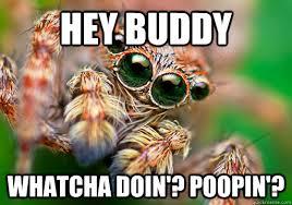Hey Buddy Meme - hey buddy whatcha doin poopin misc quickmeme