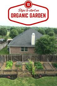Small Backyard Vegetable Garden by How To Start A Backyard Vegetable Garden Hometalk Gardening