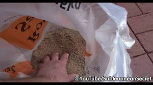 Envirobond Polymeric Sand by How To Kill Weeds In Between Brick Pavers Gravel And Slabs Youtube