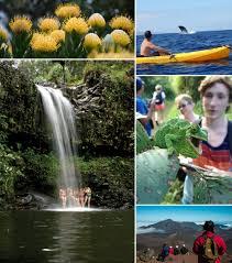 maui hiking hana kayak seven sacred pools twin falls