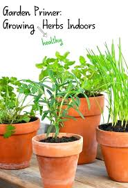 lights to grow herbs indoors low light herbs herbs indoors low light where herbs light of the