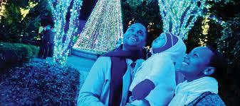 Botanical Gardens Atlanta Lights Light Show Returns To Atlanta Botanical Garden Nearest