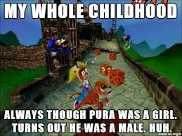 Crash Bandicoot Meme - crash bandicoot pura is a boy meme by krazykari on deviantart