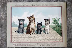 new year s postcards vintage cats new years postcard loulou downtown