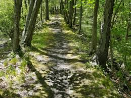 programs for building maintaining trails advocacy trail