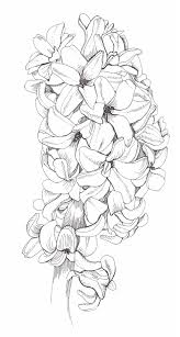 512 coloring pages images coloring books