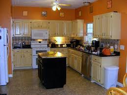 Kitchen Color Ideas With Oak Cabinets Kitchen Color Ideas With Wood Cabinets Small Home Decoration Ideas