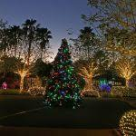 turtle back zoo lights free holiday lights at turtle back zoo return for 2017 days for