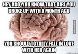 Scumbag Brain Meme - fresh scumbag brain memes wallpaper site wallpaper site