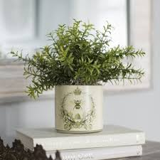 small potted plants small potted plants wayfair