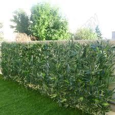 abri jardin bambou supérieur brico depot serre de jardin 14 haie de jardin en