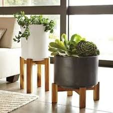 case study planters with walnut stand planter accessories case