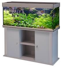idee deco aquarium images about aquarium on pinterest fish tanks fresh water and