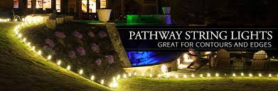 pathway lights yard envy