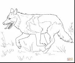 incredible wolf coloring pages with wolf coloring pages