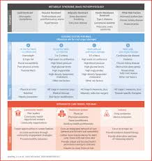 the cardiometabolic health alliance jacc journal of the