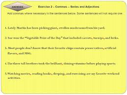 adjectives in sentences 14 grammar what why and how ppt