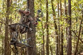 top 7 best climbing tree stand reviews in 2018 tasted reviewed