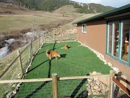 synthetic turf guadalupe california dog run dog kennels