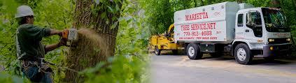 marietta tree service we direct bill to your insurance