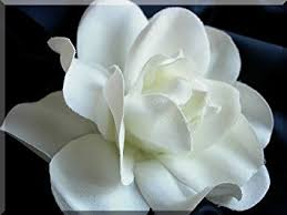 gardenia flower 4 crafted silk gardenia flower hair clip