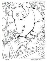 giant panda page from my animal dreamers coloring book i u0027m working