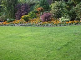 Flower Gardens Wallpapers - yellow sunflower nature bloom flower garden wallpapers free