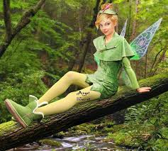tinkerbell costume tinkerbell costume whole set dress cape hat wings