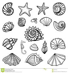 seashell coloring pages jacb me