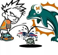 Miami Dolphins Memes - gallery miami dolphins 1 drawing art gallery