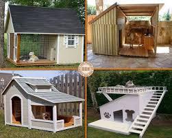 cool dog houses artistic land cool dog houses