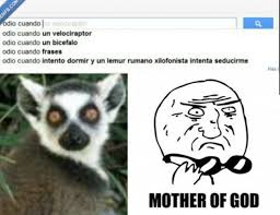 Lemur Meme - mother of lemur meme by martinvk memedroid