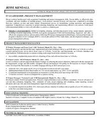 cover letter auditor it project manager resumes u2013 foodcity me