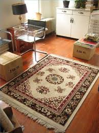 Clean Area Rugs The Best Way To Clean Area Rugs Household Organizing And House