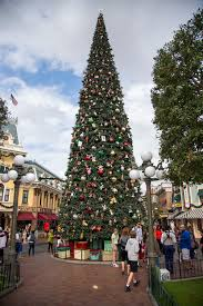 how to make the most of christmas at disneyland yellow bliss road