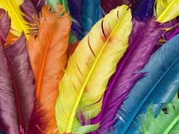 Colorful Pictures Colorful Computer Wallpaper 9588 Echip