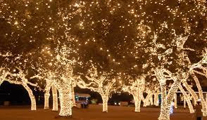 johnson city texas christmas lights magical holiday lighting in johnson city texas designdestinations