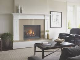 fireplace best lp fireplace insert luxury home design interior