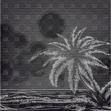 chalk palm tree and ocean sketch on chalkboard vector clipart