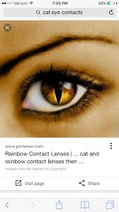 realistic cat eye contacts on the hunt