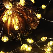 thanksgiving baby shower amazon com impress life pumpkin string lights 10 ft copper wire