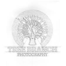 tree branch photography logo design design ninjaz