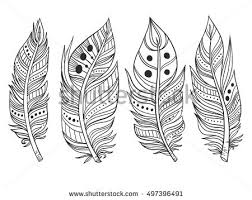 handdrawn ornamental feather lineart collection vector stock