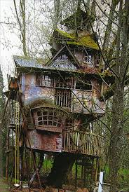 41 best tree houses living the wild images on pinterest