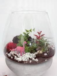succulent kits air plant fern moss succulent terrarium kit felt